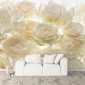 Fototapete, Flori multicolore