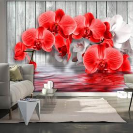 Fototapete, Orhidee roșie pe un fundal gri de lemn
