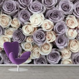 Fototapete,Purpuriu și trandafiri albi
