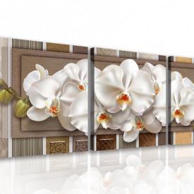 Multicanvas, Orhideea albă pe un fond dungi și maro