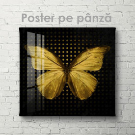 Poster, Золотая бабочка