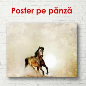 Poster, Calul de alergare în deșert