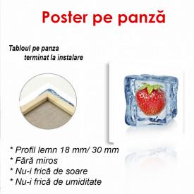 Poster, Căpșuni în cubul de gheață