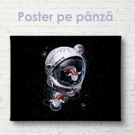 Poster, Costum spațial astronaut și pește