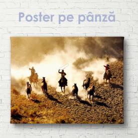 Poster, Cowboys în deșert
