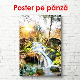 Poster, Dimineața de vară într-un parc cu o cascadă