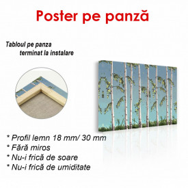 Poster, Mesteacan pictat