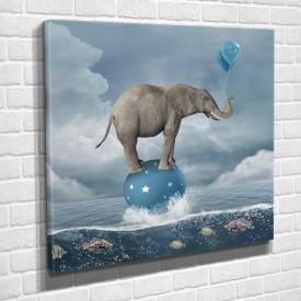 Tablouri Canvas, Elefantul pe o minge albastră