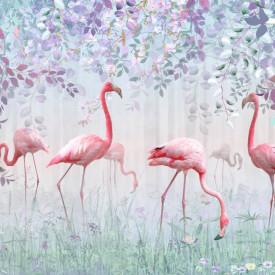 Fototapet, Fenicoturi roz în parc