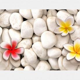 Fototapet, Flori galbene pe pietre albe