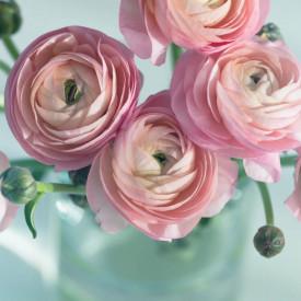 Fototapet, Flori în vază