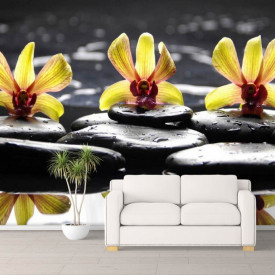 Fototapet, Flori și plante