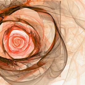 Fototapet, Trandafirul bej