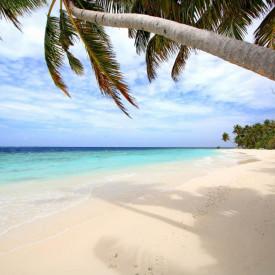 Fototapete, Frumos pe plajă