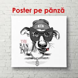 Poster, Câine alb-negru pe un fundal alb