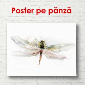 Poster, Libelula pe un fundal alb