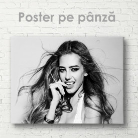 Poster, Model