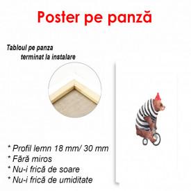 Poster, Ursuleț pe bicicletă