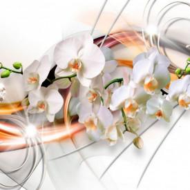 Fototapet, Orhidee pe un fundal cu linii portocalii