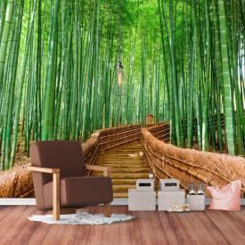 Fototapet, Pădurea de bambus din Sagano