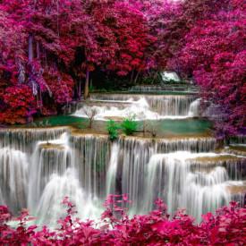 Fototapet, Plantele roz aproape de cascadă