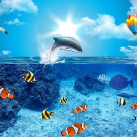 Fototapete Pentru Copii, Delfină și pește în apă