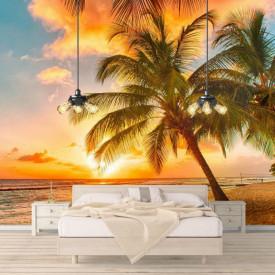 Fototapete, Plajă cu palmieri