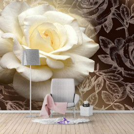 Fototapete, Trandafir alb pe un fundal negru