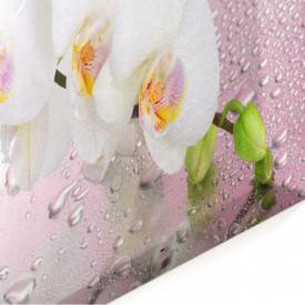 Multicanvas, Crenguța de orhideea albă.