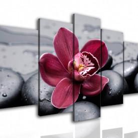 Multicanvas, Orhideea bordo pe piatra neagra