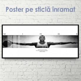 Poster, Aripile lui Mikhail Jordan