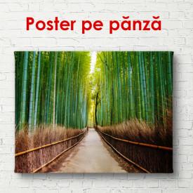 Poster, Drumul de bambus