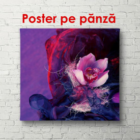 Poster, Floare roz pe un fundal violet