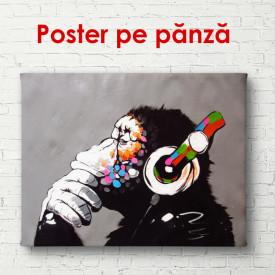 Poster, Maimuța in casti