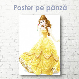 Poster, Prințesa Belle