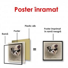 Poster, Un câine cu ochelari