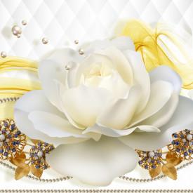 Fototapet 3D, Un trandafir alb pe un fundal alb abstract