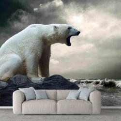 Fototapet Animale, Urs polar pe fundalul cerului înorat