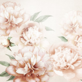 Fototapete, Peonies roz delicate pe un fundal deschis
