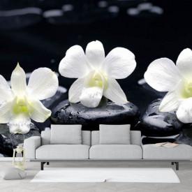 Fototapete, Pietricele negre și flori albe