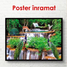 Poster, Cascada și animale de pădure