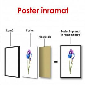 Poster, Floare de iris pictat în acuarelă