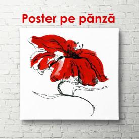 Poster, Floarea roșie