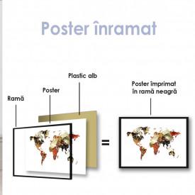 Poster, Harta lumii din condimente