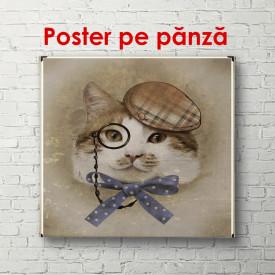 Poster, Pisoi cu ochelari