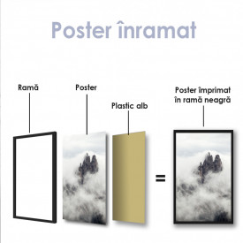 Poster, Stânci prin ceață
