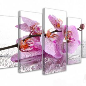 Tablou modular, Crenguță de orhidee și rouă