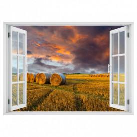 Fereastră falșă, Fereastră 3D cu vederea spre apusul de soare în lanul de grâu