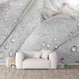 Fototapet, O textură de frunze cu o strop de ploaie