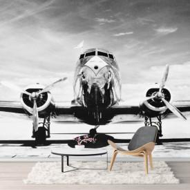Fototapete, Avion alb-negru pe fundalul cerului.